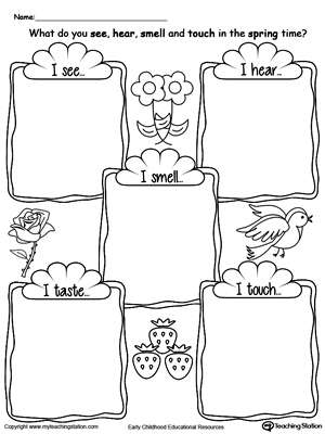 Early Childhood Human Body Worksheets | MyTeachingStation.com
